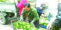 沈阳:秋菜大量上市 大葱抢手红萝卜遇冷 - 辽宁频道