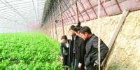农行辽宁省分行农户贷款业务迈入大数据时代 - 辽宁金农网