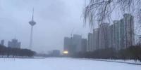 看谁还说雪下丢了!辽宁今年第一场雪终于来临 - 辽宁频道