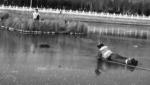 盘锦一老人滑冰掉进冰窟抱住泡沫板等待救援 - 辽宁频道