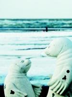当大海遇上雪 大连美成了诗!(组图) - 辽宁频道