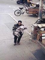 沈阳一小区内男子路过将小狗拽走 思崽狗妈寒天嗷嗷狂吠 - 新浪辽宁