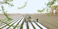 今年春耕有啥不一样?了解一下 - 农业机械化信息网