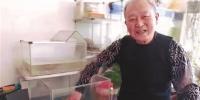 20年前他抱养一只小龟还写下万余字养龟日记 - 辽宁频道