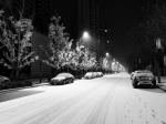 降雪后辽宁寒冷发威 早高峰天冷路滑 - 新浪辽宁