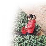203.1万人次在大连过年(组图) - 辽宁频道
