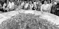 第十六届中国沈阳韩国周昨日正式启幕 - 辽宁频道